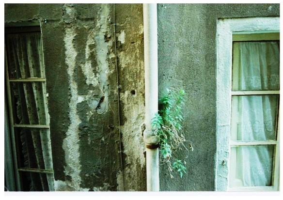 tubo davanti alla finestra - foto maurizio manzo 1979 -